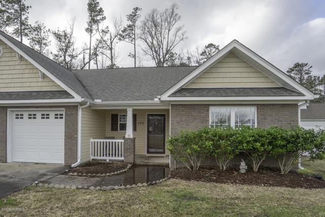 220 Kestrel Court, New Bern, NC 28560 (MLS #100151792) :: Coldwell Banker Sea Coast Advantage
