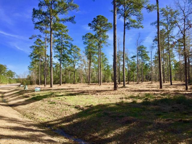 Lot 32 Bailey Pointe Drive, Belhaven, NC 27810 (MLS #100152639) :: Coldwell Banker Sea Coast Advantage