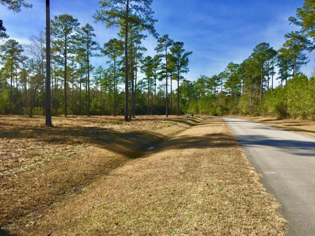 Lot 33 Bailey Pointe Drive, Belhaven, NC 27810 (MLS #100152678) :: Coldwell Banker Sea Coast Advantage