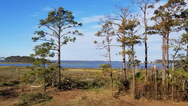 326 Anson Road, Beaufort, NC 28516 (MLS #100152862) :: The Keith Beatty Team