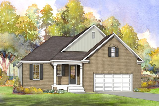 59 W Cloverfield Lane, Hampstead, NC 28443 (MLS #100153584) :: Courtney Carter Homes