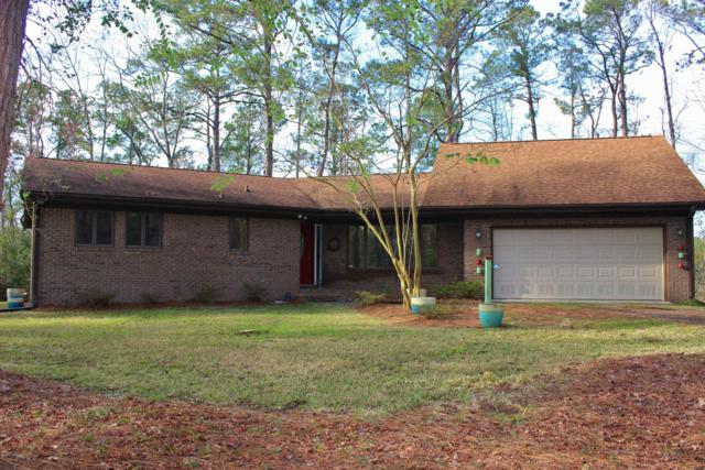 6003 Falcon Drive, Oriental, NC 28571 (MLS #100153615) :: The Cheek Team