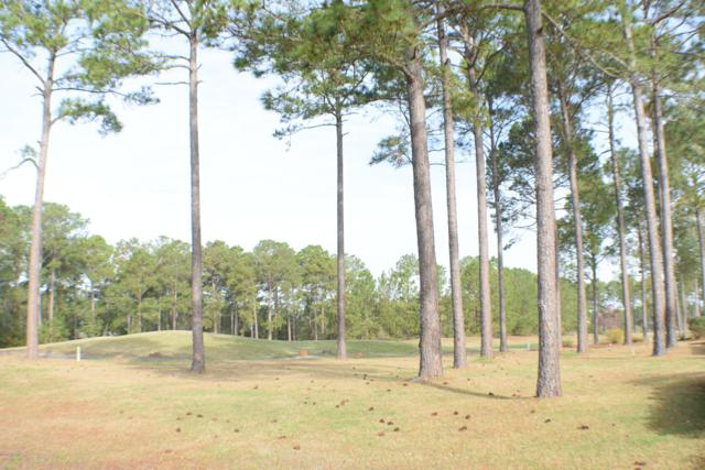 341 Crooked Gulley Circle, Sunset Beach, NC 28468 (MLS #100153726) :: Donna & Team New Bern