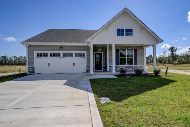 1229 Big Field Drive, Castle Hayne, NC 28429 (MLS #100153882) :: The Keith Beatty Team