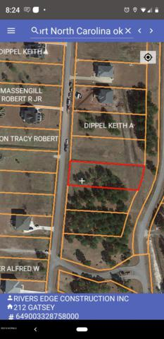 212 Gatsey Lane, Beaufort, NC 28516 (MLS #100154143) :: Donna & Team New Bern