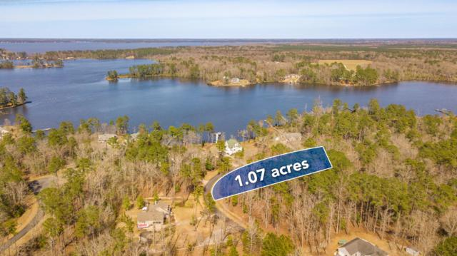 Lot 95 Waters Edge Drive, Chocowinity, NC 27817 (MLS #100154839) :: RE/MAX Essential
