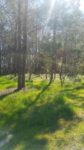 Lot 5 Brookhaven Trail, Leland, NC 28451 (MLS #100154899) :: Century 21 Sweyer & Associates