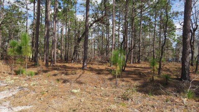 299 Argonne Road, Southport, NC 28461 (MLS #100155715) :: RE/MAX Essential