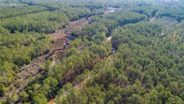 Lot 25 Orchard Creek Road, Oriental, NC 28571 (MLS #100155932) :: RE/MAX Essential
