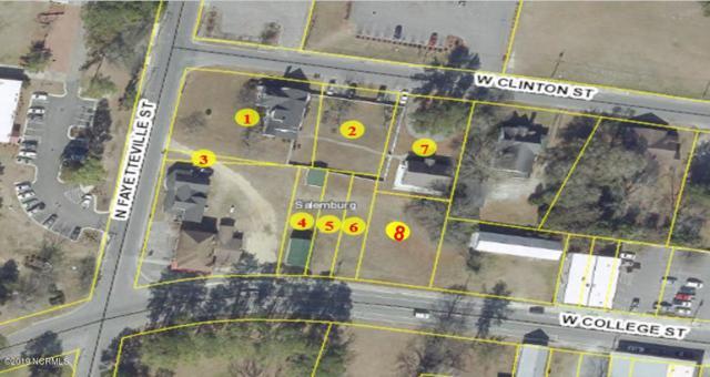 104 Fayetteville Street, Salemburg, NC 28385 (MLS #100156012) :: The Pistol Tingen Team- Berkshire Hathaway HomeServices Prime Properties