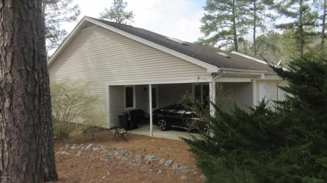 29900 Blue Heron Court, Wagram, NC 28396 (MLS #100156152) :: Century 21 Sweyer & Associates