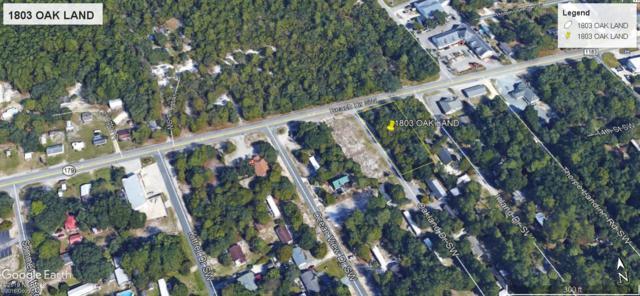1803 Oak Land Drive SW, Ocean Isle Beach, NC 28469 (MLS #100156304) :: Century 21 Sweyer & Associates
