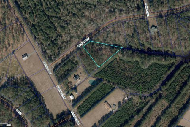 92 Smith Creek Road, Oriental, NC 28571 (MLS #100156326) :: Donna & Team New Bern