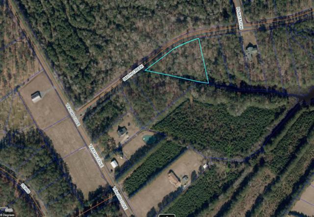 140 Smith Creek Road, Oriental, NC 28571 (MLS #100156327) :: Donna & Team New Bern