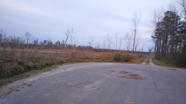 Lot 3 Kemp Rodgers Road, Atkinson, NC 28421 (MLS #100156420) :: Donna & Team New Bern