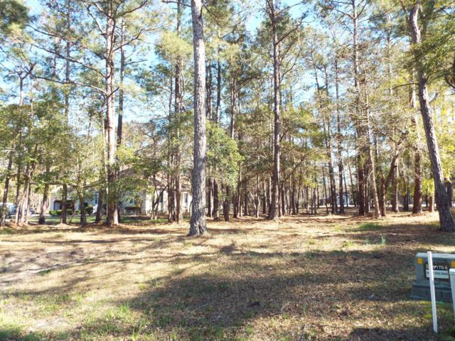 383 Genoes Point Road SW, Supply, NC 28462 (MLS #100156532) :: RE/MAX Essential