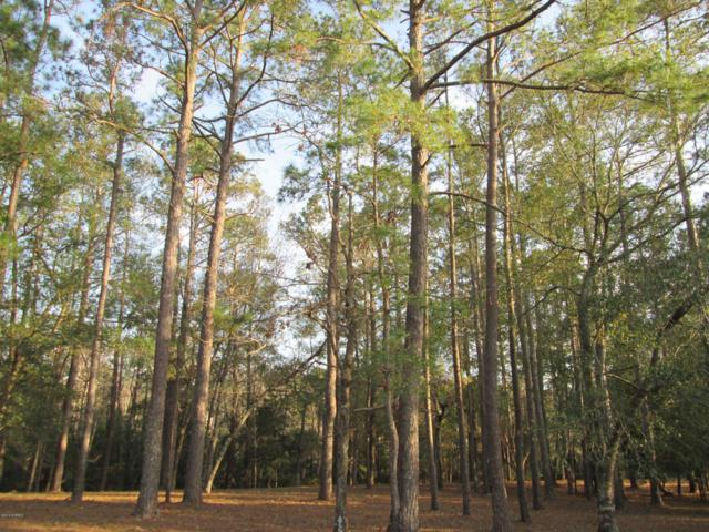 3027 Island Drive SE, Bolivia, NC 28422 (MLS #100156990) :: The Keith Beatty Team