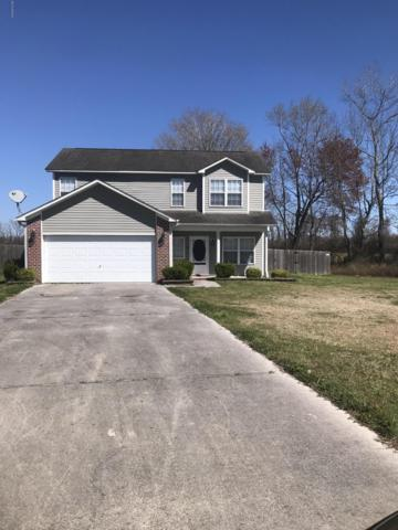 205 Chandler Court, Maysville, NC 28555 (MLS #100157063) :: Courtney Carter Homes