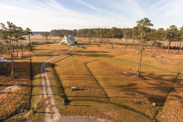 222 Settlement Lane, Newport, NC 28570 (MLS #100157145) :: Courtney Carter Homes
