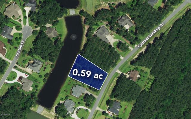 151 Cypress Landing Trail, Chocowinity, NC 27817 (MLS #100158126) :: Donna & Team New Bern