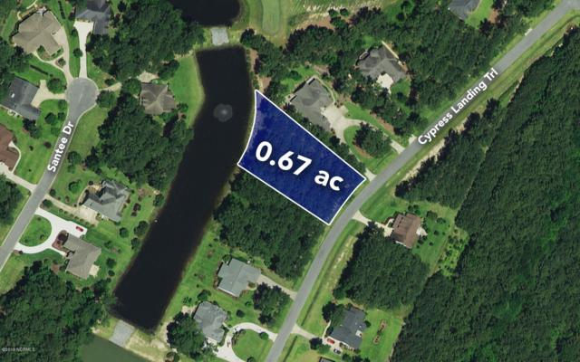 152 Cypress Landing Trail, Chocowinity, NC 27817 (MLS #100158149) :: Donna & Team New Bern