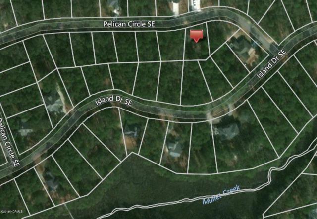 669 Pelican Circle SE, Bolivia, NC 28422 (MLS #100158517) :: Coldwell Banker Sea Coast Advantage