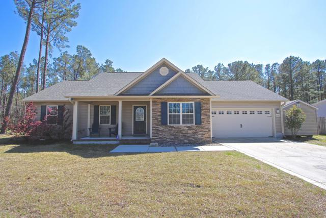 840 Old Folkstone Road, Sneads Ferry, NC 28460 (MLS #100158531) :: Courtney Carter Homes