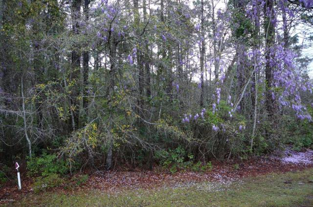 Lot 20 Greenwood Court, Calabash, NC 28467 (MLS #100158932) :: Donna & Team New Bern