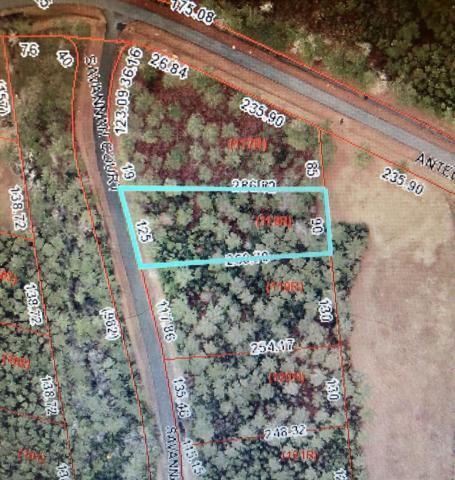 103 Savannah Court, Havelock, NC 28532 (MLS #100159960) :: Donna & Team New Bern