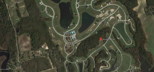 199 Everett Park Trail, Holly Ridge, NC 28445 (MLS #100160028) :: Donna & Team New Bern