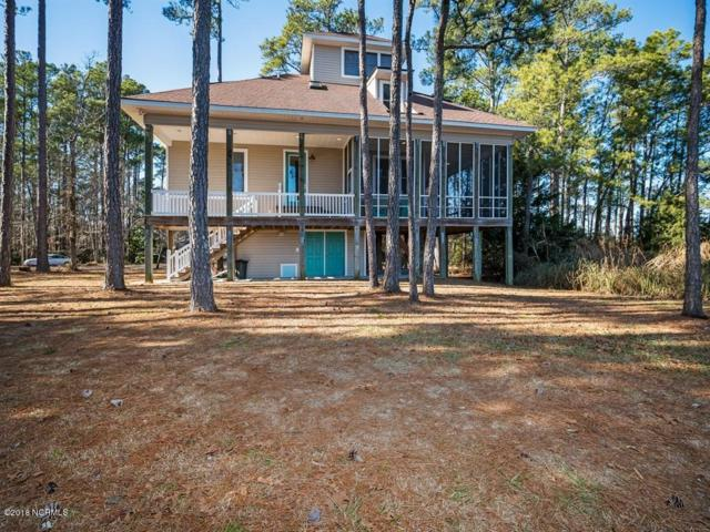 42 Lori Lane, Oriental, NC 28571 (MLS #100160504) :: RE/MAX Essential