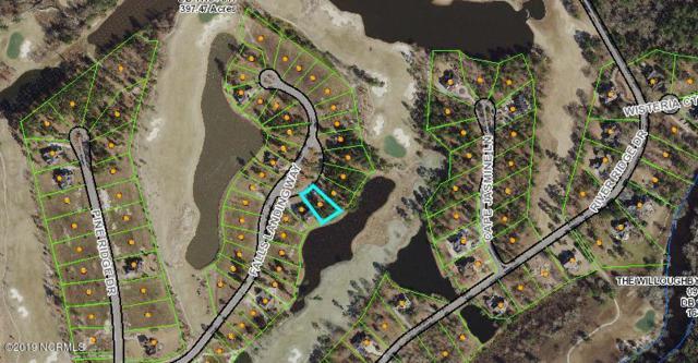 166 Falls Landing Way, Wallace, NC 28466 (MLS #100160543) :: Donna & Team New Bern