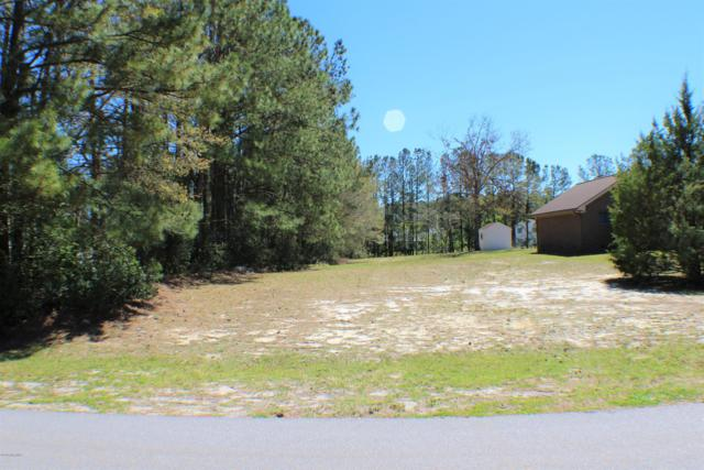 141 Millicent Court, Bogue, NC 28570 (MLS #100160578) :: The Keith Beatty Team