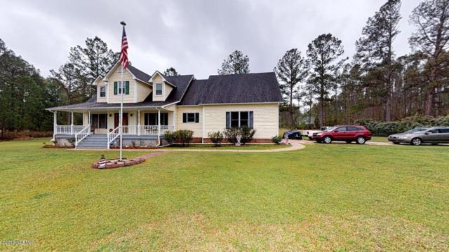 101 Sumter Drive, Havelock, NC 28532 (MLS #100160651) :: The Keith Beatty Team