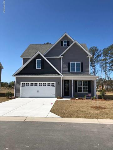 3725 Stormy Gale Place, Castle Hayne, NC 28429 (MLS #100160799) :: RE/MAX Essential