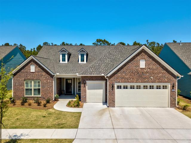 857 Broomsedge Terrace, Wilmington, NC 28412 (MLS #100161099) :: Chesson Real Estate Group