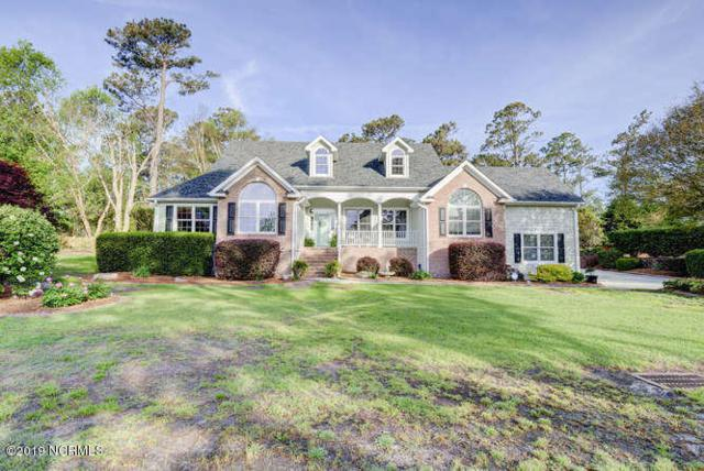 102 Great Pine Court, Wilmington, NC 28411 (MLS #100161368) :: Thirty 4 North Properties Group