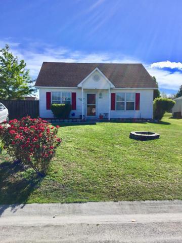 6903 Alamosa Drive, Wilmington, NC 28411 (MLS #100161540) :: RE/MAX Essential