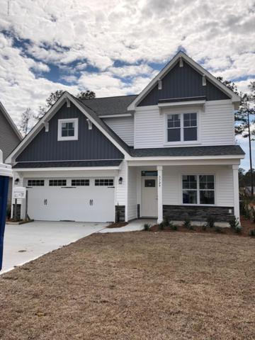 3729 Stormy Gale Place, Castle Hayne, NC 28429 (MLS #100161545) :: The Keith Beatty Team