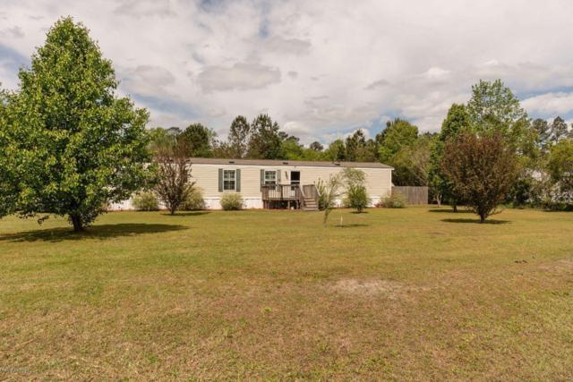 87 Green Hill Court, Rocky Point, NC 28457 (MLS #100161646) :: Century 21 Sweyer & Associates