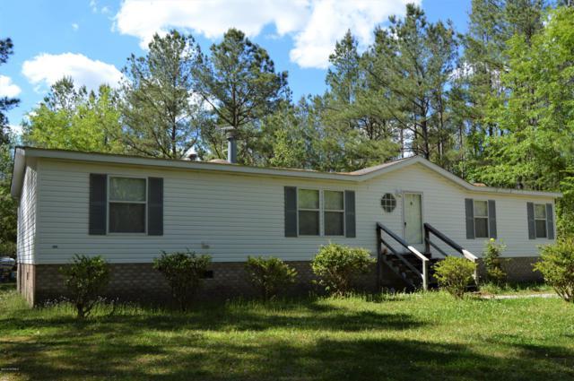 87 H. E.  Hales Drive, Atkinson, NC 28421 (MLS #100161800) :: The Pistol Tingen Team- Berkshire Hathaway HomeServices Prime Properties