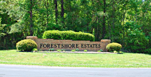 Lot 25 Forest Shore Estates Drive, Oriental, NC 28571 (MLS #100162800) :: The Tingen Team- Berkshire Hathaway HomeServices Prime Properties