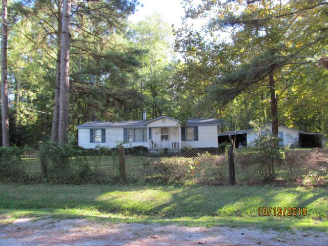 173 Poplar Drive, Blounts Creek, NC 27814 (MLS #100164670) :: Lynda Haraway Group Real Estate