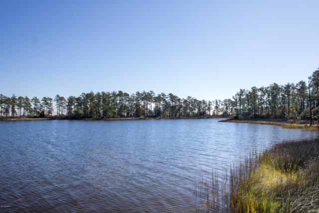 253 Ballast Point, Oriental, NC 28571 (MLS #100164704) :: Lynda Haraway Group Real Estate