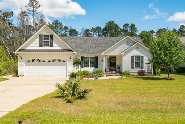 2208 Caracara Drive, New Bern, NC 28560 (MLS #100164938) :: Donna & Team New Bern