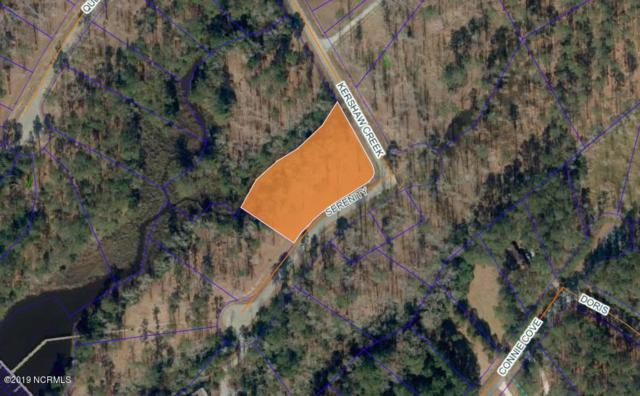 30 Serenity Circle, Oriental, NC 28571 (MLS #100164941) :: Vance Young and Associates