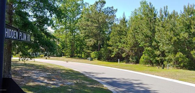 9617 Hidden Plum Road NE, Leland, NC 28451 (MLS #100165080) :: Welcome Home Realty