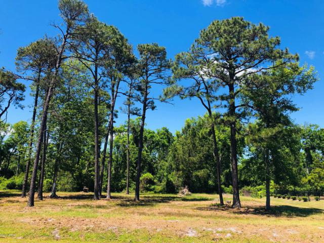 2394 St James Drive, Southport, NC 28461 (MLS #100165121) :: Lynda Haraway Group Real Estate