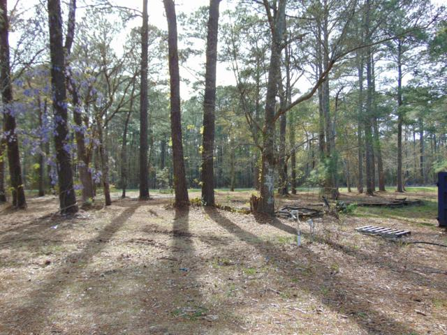 Lot 4 Duck Road, Bath, NC 27808 (MLS #100165282) :: Lynda Haraway Group Real Estate