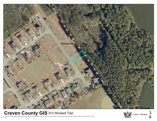 313 Woolard Trail, New Bern, NC 28560 (MLS #100165440) :: Donna & Team New Bern
